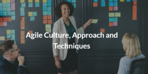 Agile Culture, Approach and Techniques
