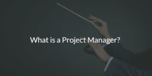 the role of the Project Manager, Responsibilities of the Project Manager, Task of the Project Manager