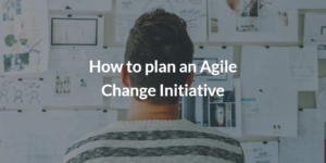 How to plan an Agile Change Initiative to optimize your final products and team cooperation!