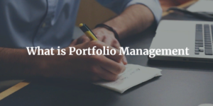 What is portfolio management