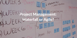 waterfall or agile