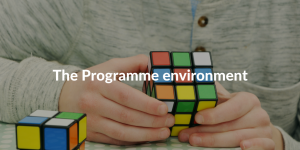 the programme environment