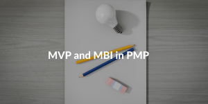 mvp and mbi in pmp
